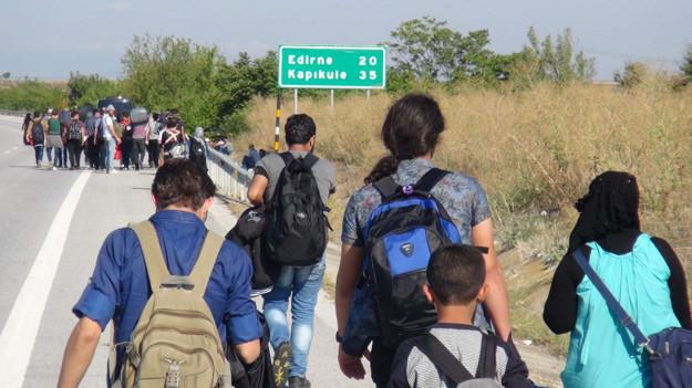 Suriyelilere vatandaşlık projesi: Önce 'beyaz yakalılar'