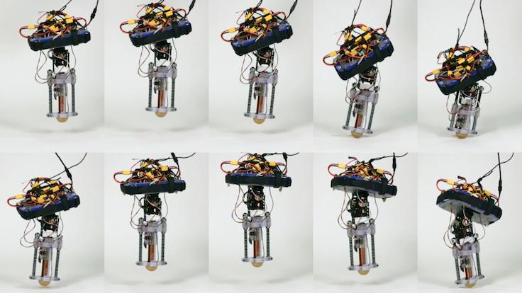 Bu robotun tek yaptığı zıplamak