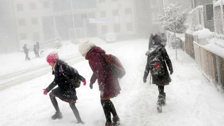 Doğu Karadeniz'de kar tatili