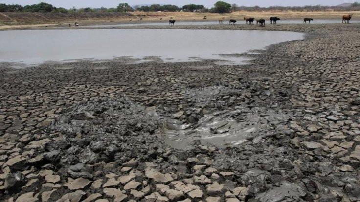 Zimbabve'de sel 246 can aldı