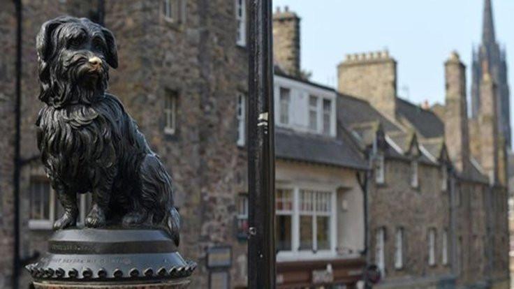 Edinburgh'da hayvan heykeli sayısı kadın heykelinden çok!