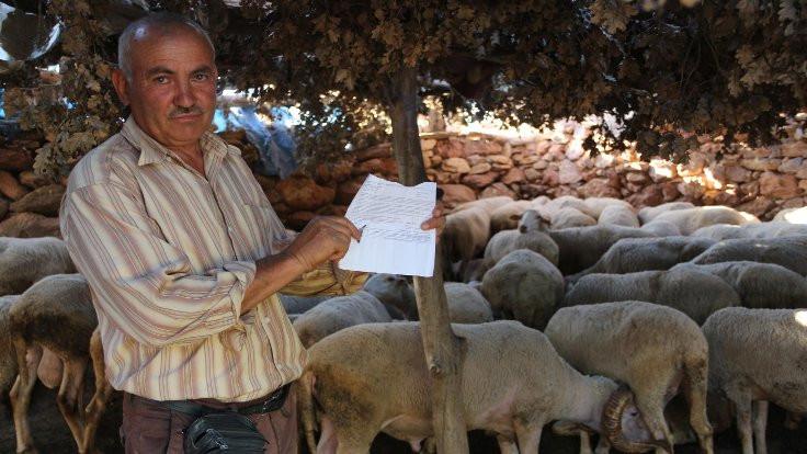 Manisalı çobana geçmediği köprüden ceza