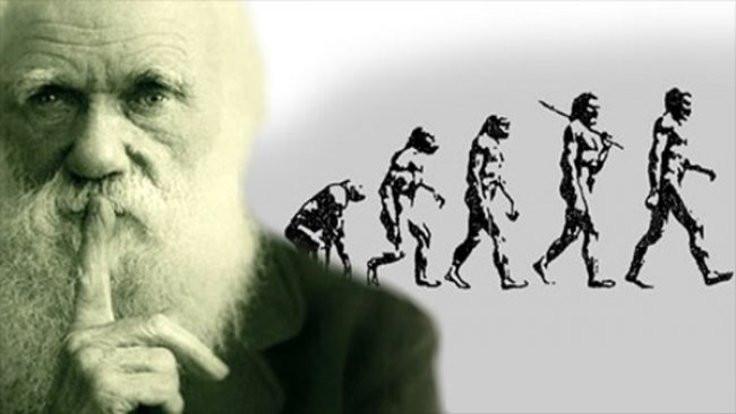 Evrim bağlamında ateist ya da dindar olmak