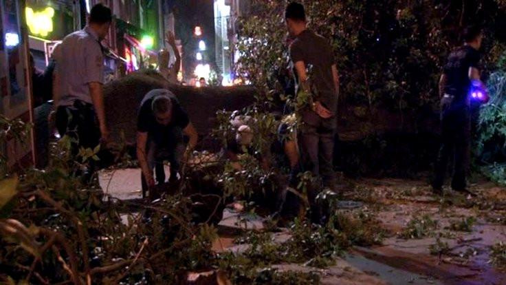 Kadıköy'de kafenin üzerine ağaç devrildi