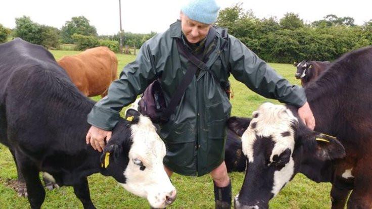 Vejeteryan sorgulama: Sığırları özgür bıraktı!