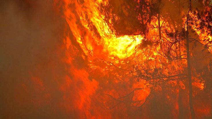 İzmir'de başlayan yangın Manisa'ya ulaştı