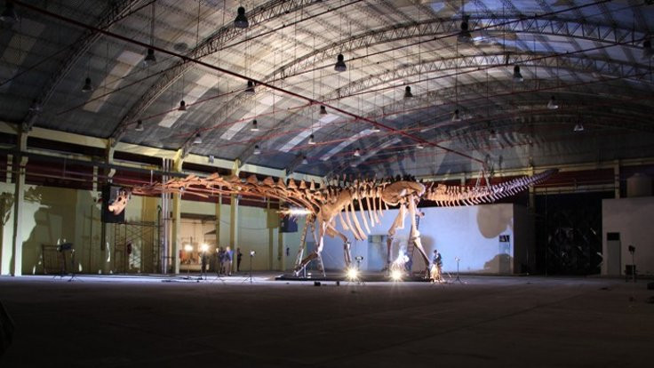 Dünyanın en büyük dinozoru T Rex değil