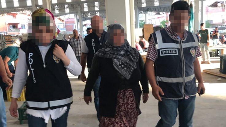 Sebze satarken 'FETÖ'den gözaltına alındı