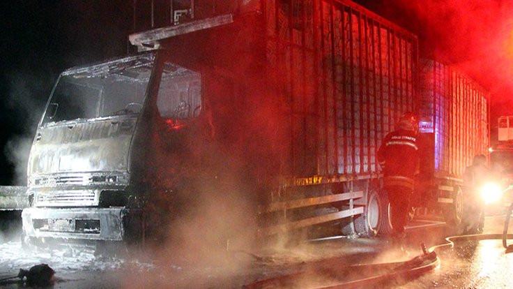 Bolu'da bir kamyon taşıdığı tavuklarla birlikte yandı