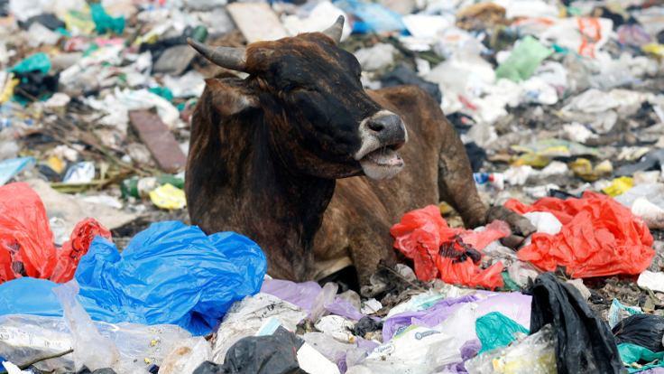 Kenya'da plastik poşet artık yasak