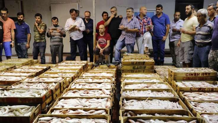 1 kasa balık, 1 kilo tavuk fiyatına