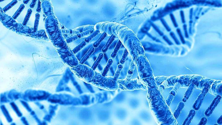 Genler istenmeyen değişimler üretebiliyor
