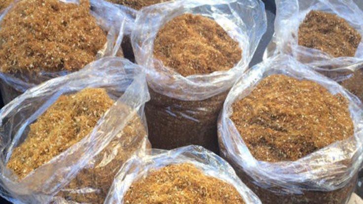 2 bin 700 kilo tütün yakalandı