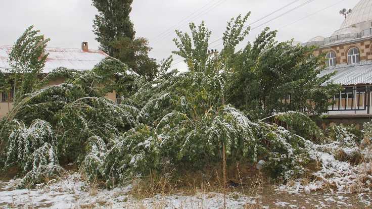Başkale'de yılın ilk kar yağışı