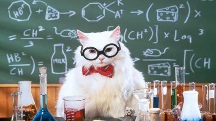 Bilimsel tezlerim – II
