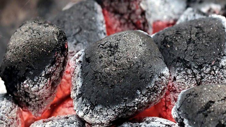 'Kömüre dünya sırtını, Türkiye yüzünü döndü'