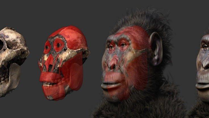 Evrimin tarihi değişebilir!