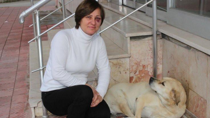 Sokak hayvanlarını besleyen kadına saldırı