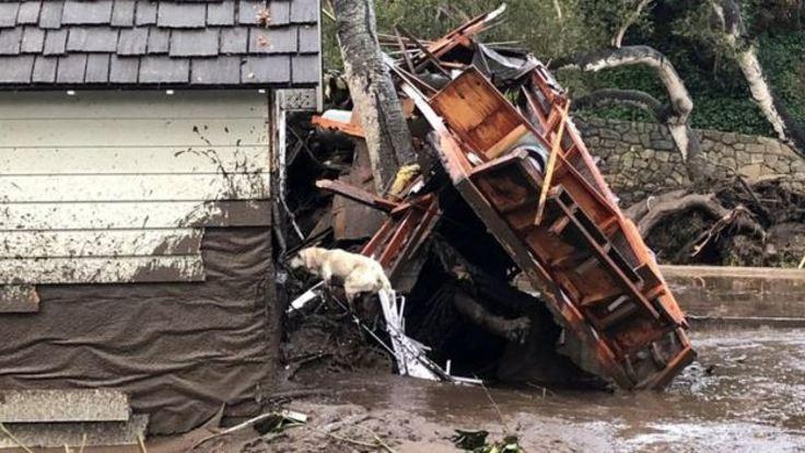 Kaliforniya'da sel felaketi: En az 13 ölü