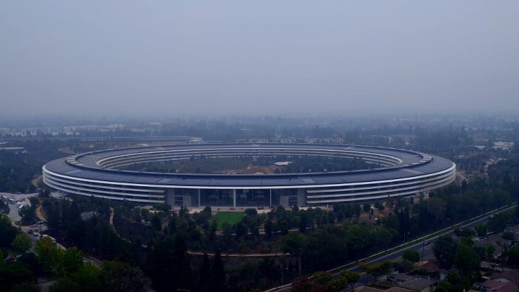 Cam duvarlara Apple çalışanları yaralanıyor