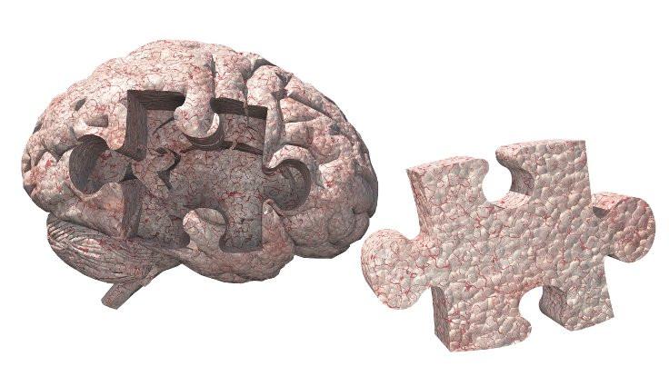 Sağlıklı mitokondriler Alzheimer hastalığını durdurabilir