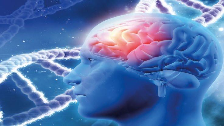 'Sağlıklı mitokondriler Alzheimer hastalığını durdurabilir'