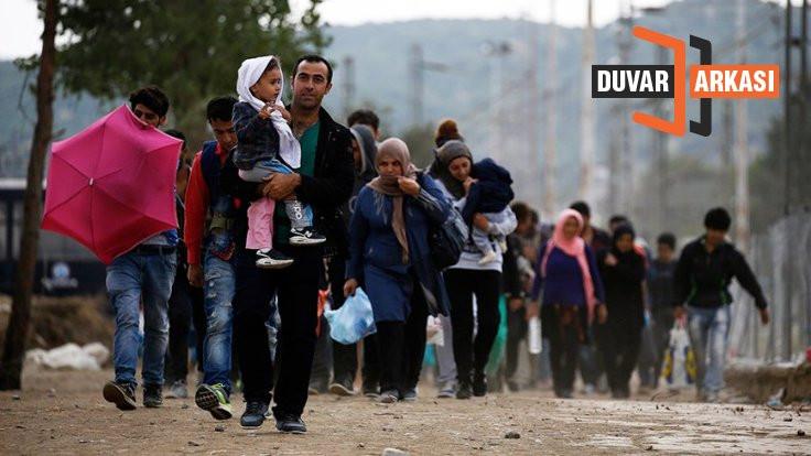 Suriyeliler 'iş yok' diye vatandaşlık istemiyor!