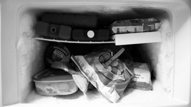 Dondurucuya koymamanız gereken besinler