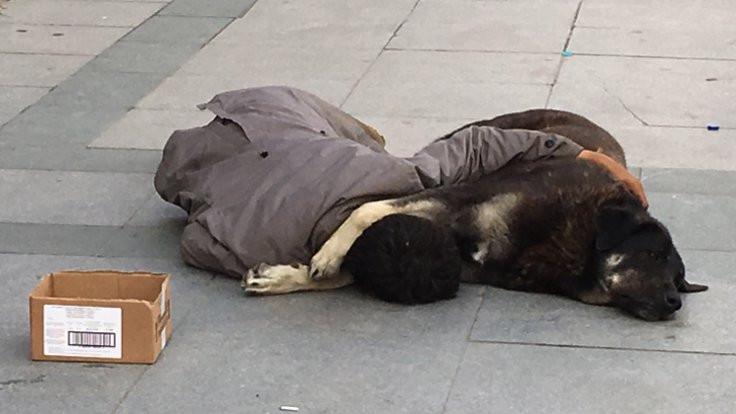 Sokak köpeğine sarılarak uyudu