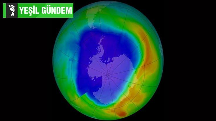 Ozonu delen kimyasalların sinsi dönüşü