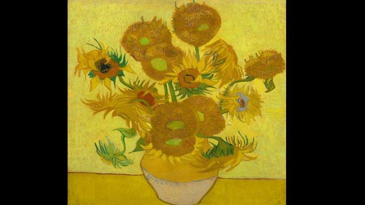 Van Gogh'un 'Ayçiçekleri' soluyor