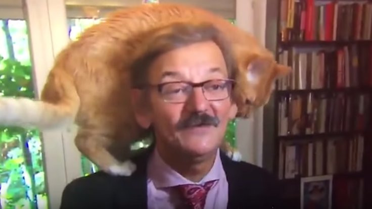 Tarihçinin kedisi de röportaja katıldı