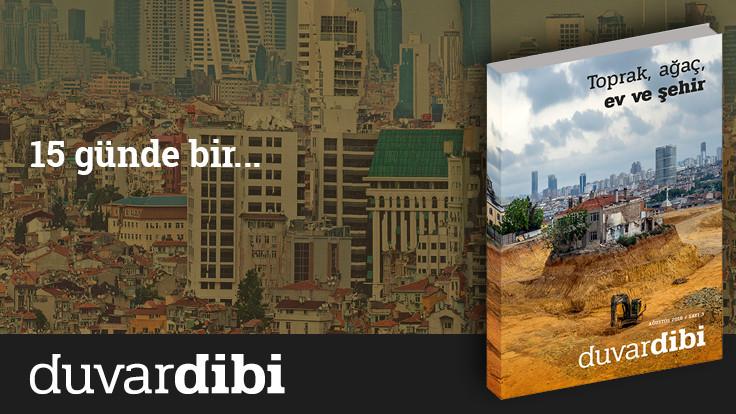 Toprak, ağaç, ev ve şehir