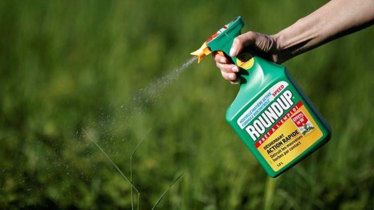 Roundup için rekor tazminat cezası