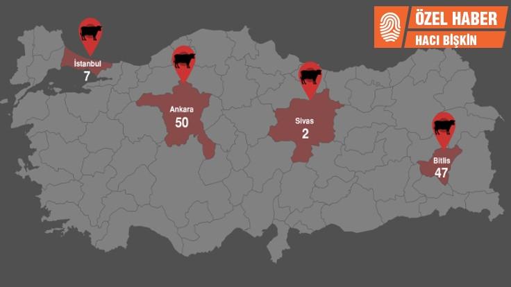 Türkiye'nin şarbon haritası!