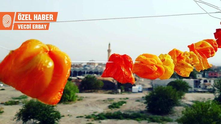 Biberler dizildiyse iplere, Diyarbakır'da yaz bitiyor demektir