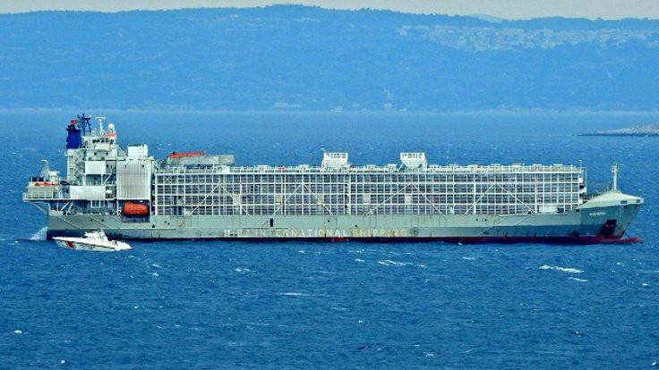 'Şarbonlu gemi' krizi: Ne kadar ithalat yapıldı?