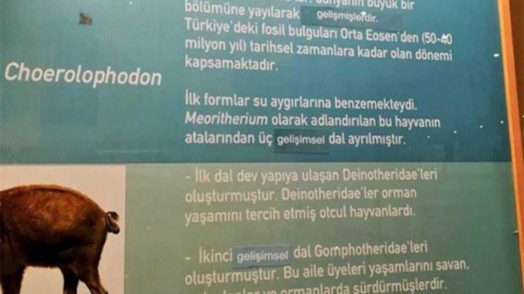 Müzede 'evrim'e sansür iddiası