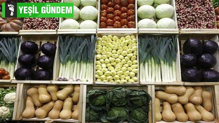 10 milyar insana yetebilecek gıda sistemi mümkün