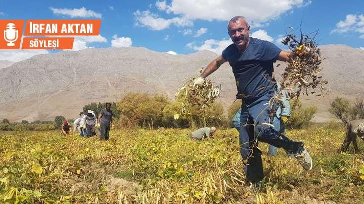 Maçoğlu: Modelimiz Ovacık'la sınırlı kalmayacak