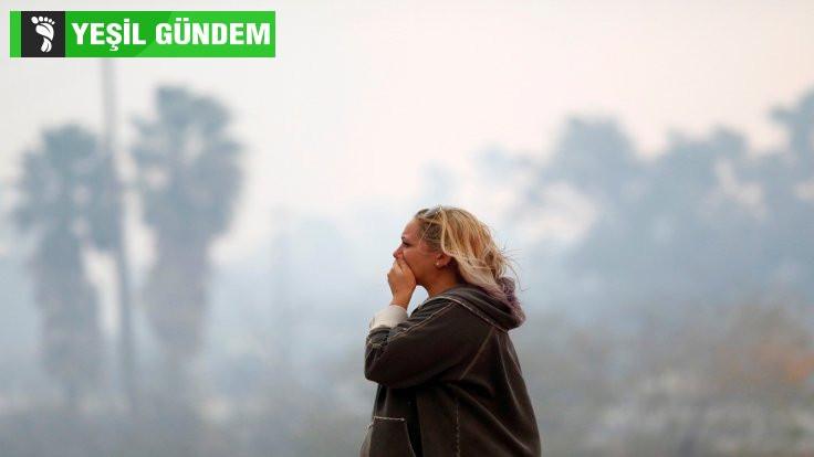 Kaliforniya yangını neden bu kadar büyüdü?