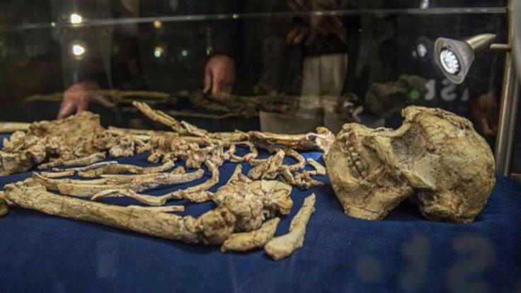 Evrimin eksik halkası: Yarı insan yarı maymun!