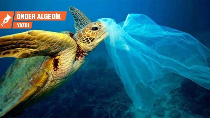 Plastik hakkında yanlış bildiğimiz 7 şey