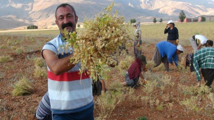 Maçoğlu'ndan belediye için dayanışma çağrısı