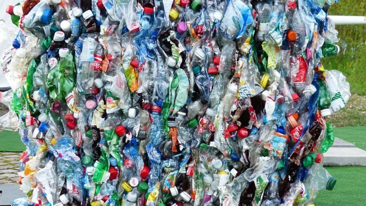 Plastikten kurtulmanın yolları - Sayfa 1