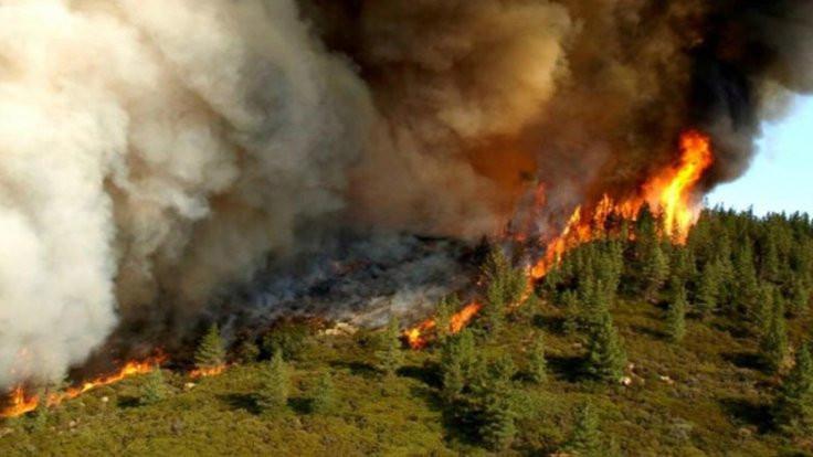 Orman yangınları içme suyunu bozuyor