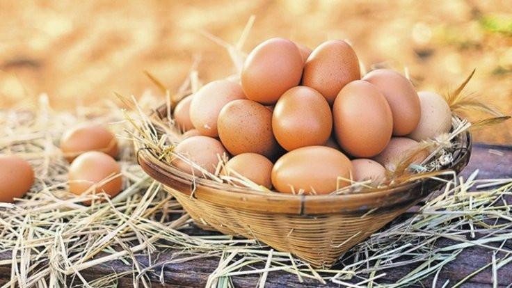 Dikkat: O kadar organik yumurta yok!
