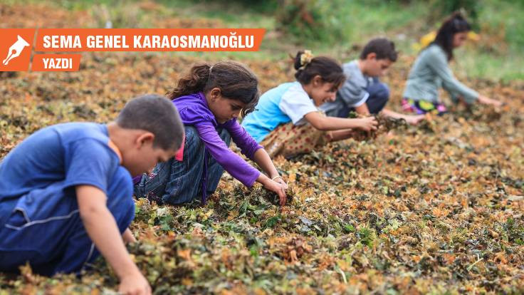12 Haziran Dünya Çocuk İşçiliği ile Mücadele Günü: Çocuk emeği en pahalı emektir