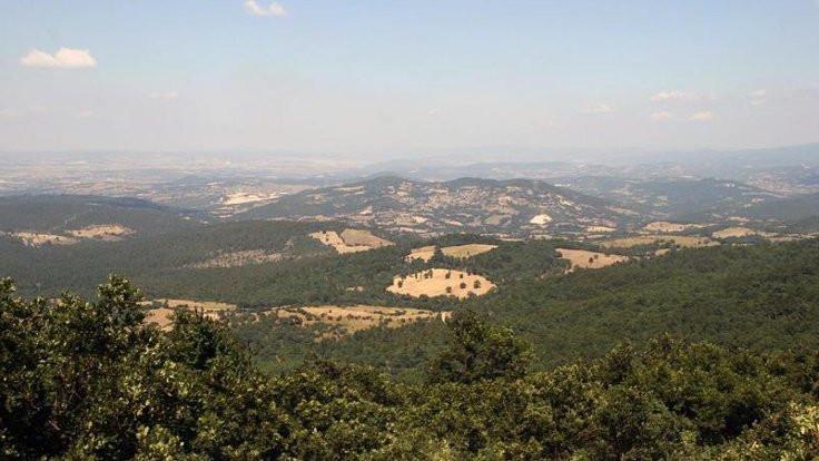 Cengiz, Kaz Dağı'nda maden satın aldı