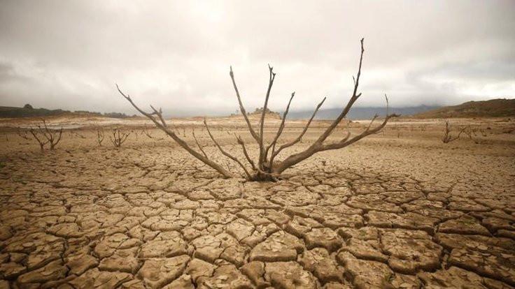 Dünya, 2019 doğal kaynak limitini aştı